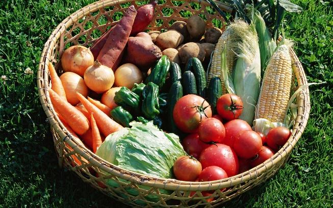 Можно лук, клубнику, огурцы, помидоры, капусту сажать после картофеля?