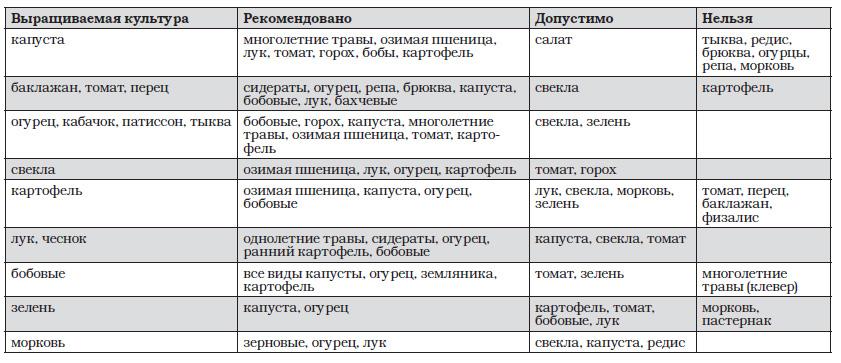 Таблица, что сажать после свеклы
