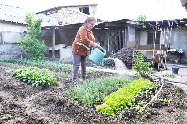 Что делать садоводу в мае полив
