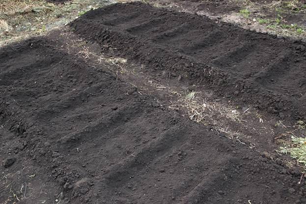 Подготовка земли для высадки помидор
