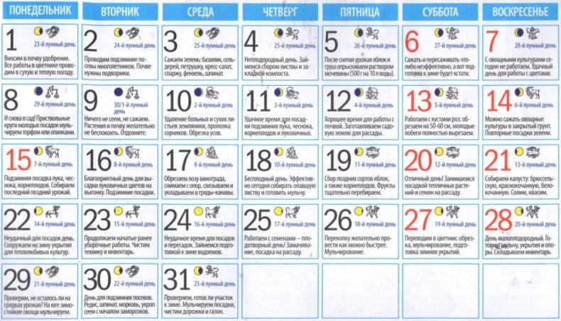 Лунный посевной календарь садовода по датам на октябрь 2018 (таблица)
