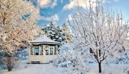 Лунный календарь на январь 2019 для садоводов