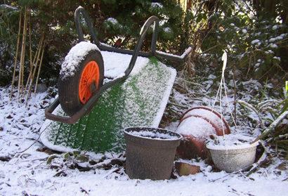 Лунный посевной календарь на декабрь 2019 для садоводов
