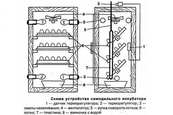 Механизм переворачивания яиц
