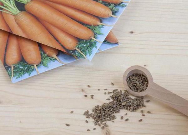Калибровка семян моркови перед посевом
