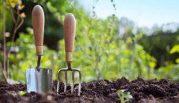 Лунный посевной календарь на апрель 2019 года для огородников, садоводов, цветоводов (таблица)