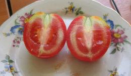 Почему помидоры внутри белые и жесткие и созревают наполовину