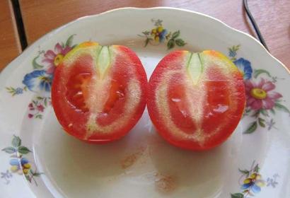 Почему помидоры внутри белые и жесткие