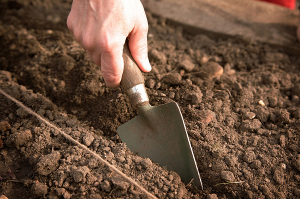 Подготовка земли