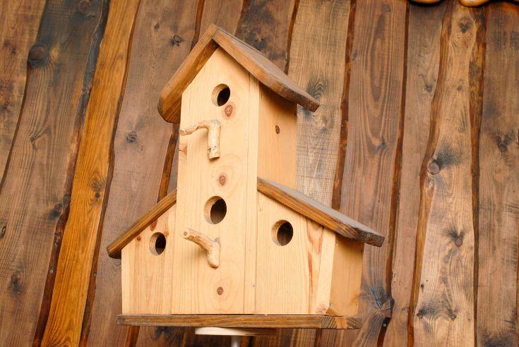 Разновидности скворечников для птиц и скворцов